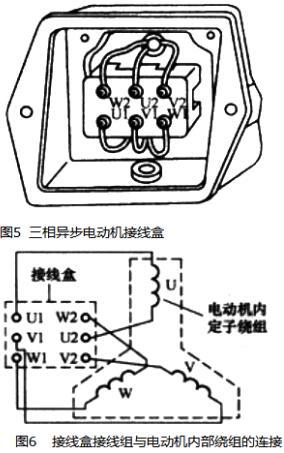 电动机原理与结构图,三相异步电动机
